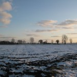 Wintry field at Upton